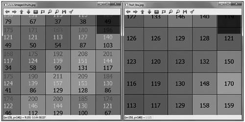 一幅 RGB 彩色图像和灰度图像的一个 8 位表示